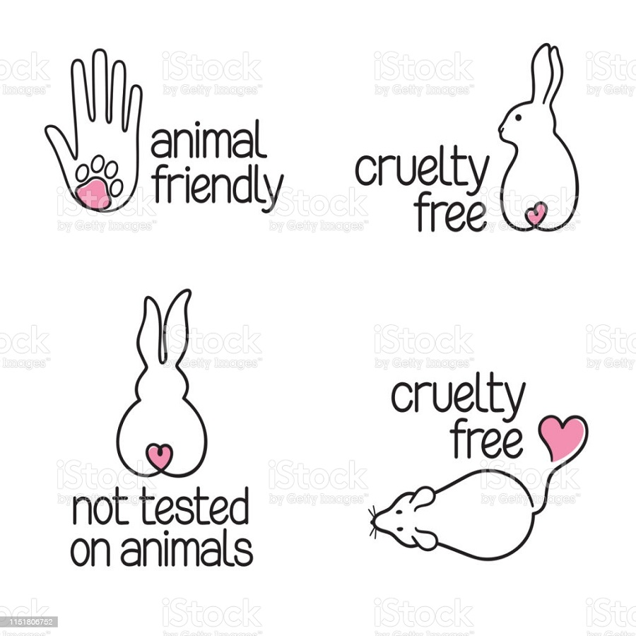 خرگوش 2