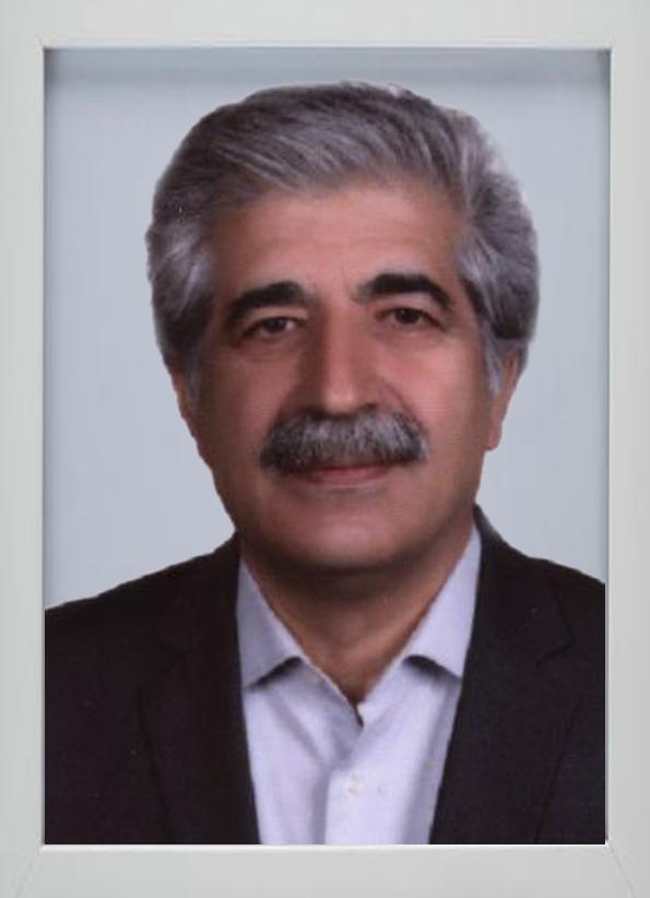 رضا-کامی