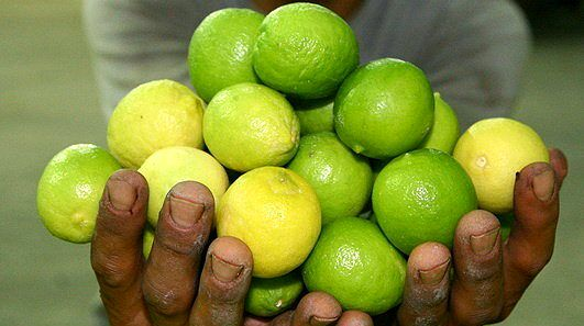 خواص پوست لیموترش از میوه اش بیشتر است