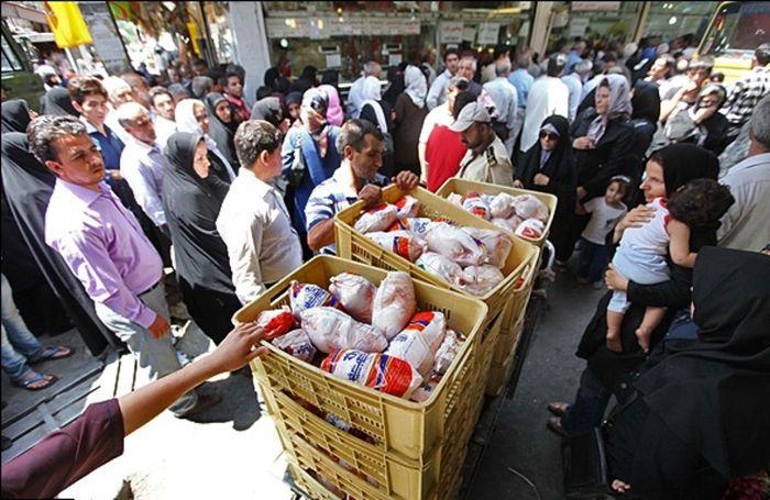 زنگ خطر افزایش دوباره قیمت مرغ در بازار