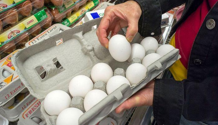 قیمت روز تخم مرغ در بازار (۹۹/۰۵/۱۱) + جدول