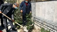 کاشت نهال توسط رئیس هیات عامل ایمیدرو در روز درختکاری