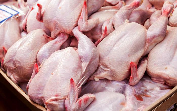 قیمت مرغ در بازار امروز (۹۹/۰۷/۱۵) + جدول
