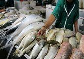 قیمت روز ماهی در بازار (۹۹/۰۶/۱۹) + جدول