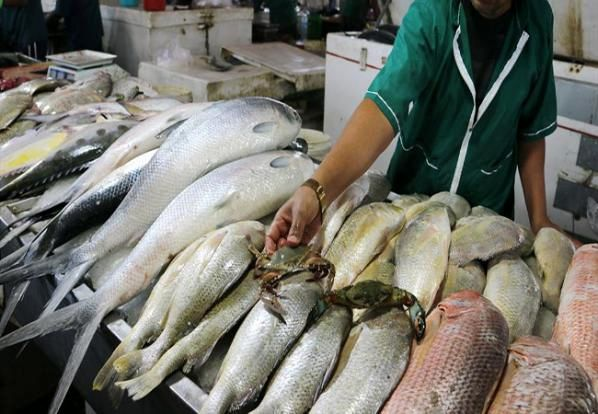 قیمت روز ماهی در بازار (۱۴۰۰/۰۱/۳۰) + جدول