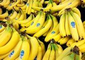 موز گران شد+قیمت انواع میوه (۹۹/۱۱/۳)
