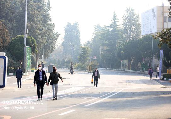 آلودگی (3)