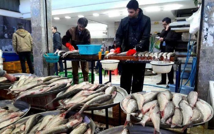 قیمت ماهی و میگو در بازار امروز (۹۹/۰۹/۱۶) + جدول