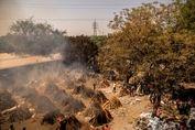 تصاویر/ فاجعه کرونا در هند