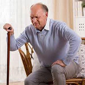 گیاهی برای کنترل زانودرد سالمندان
