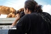تصاویر/ جمعه بازار سگی در اوج کرونا