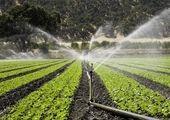 پیشنهاد آبی وزیر کشاورزی به کشاورزان