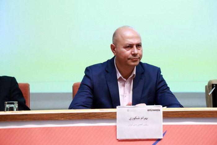 سهم ناچیز ایران در استفاده از ذخایر معدنی