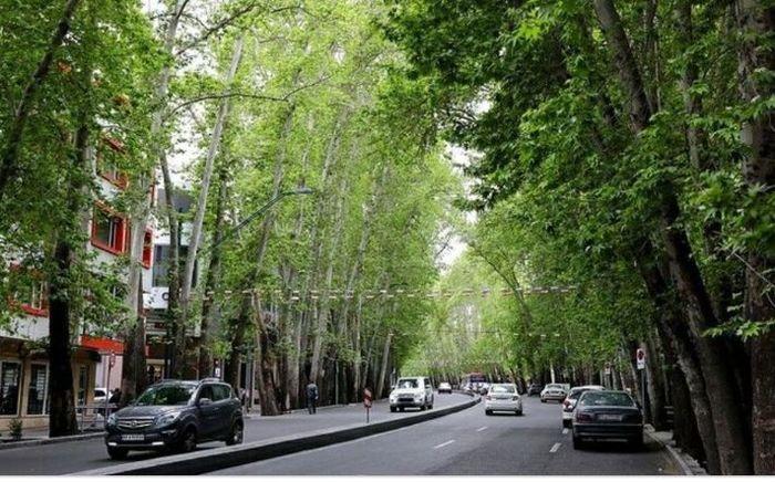 خیابان ولیعصر تهران در آستانه ثبت جهانی