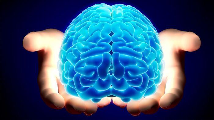 مغزتان را به چالش بکشید / با ۵ ورزش ساده باهوش شوید!