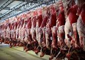 توزیع گوشت دولتی آغاز شد + قیمت