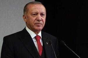 اردوغان: گردشگران عامل پیشرفت ترکیه هستند