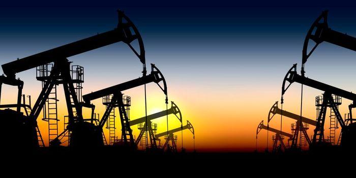 تولید نفت عراق افزایش یافت